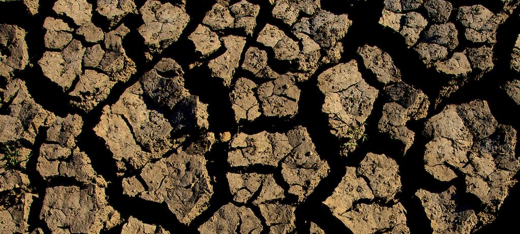 Soil Biogeochemistry